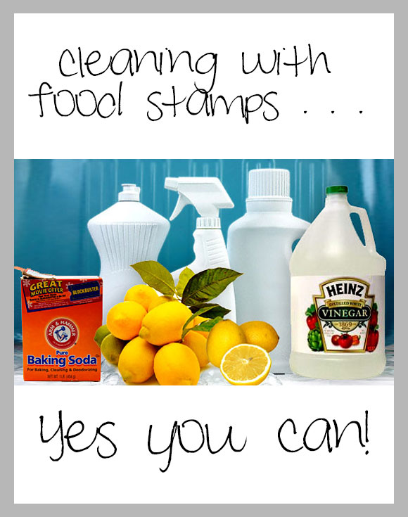 Cleaning-With-Food-Stamps---Yes-You-Can!